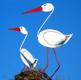 A pair of storks Royalty Free Stock Photography