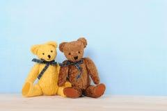 Pair of stuffed bears Stock Image