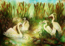 Pair of swans and crane birds at pond surrounded with reeds, fairytale illustration Royalty Free Stock Photos