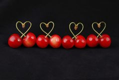 Pair of sweet cherry fruits with heart shaped stem. Isolated on black background Royalty Free Stock Photos