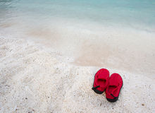 Pair of swimming shoes on sea coast Stock Photo