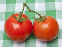 Pair of Tomatoes on a Picnic Blanket Royalty Free Stock Image