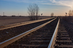 Pair of Tracks Toward Horizon at Sunset Stock Photography
