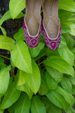 A pair of traditional handmade Indian women`s shoes jutis on a background of green leaves Royalty Free Stock Images