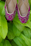 A pair of traditional handmade Indian women`s shoes jutis on a background of green leaves Stock Photos