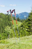 Pair of trekking poles on a background of forested mountains Royalty Free Stock Images
