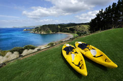 Pair of twin yellow kayaks Royalty Free Stock Images