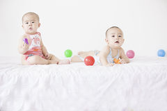 A pair of twinborn babies Stock Photos