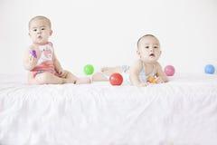 A pair of twinborn babies Stock Photos