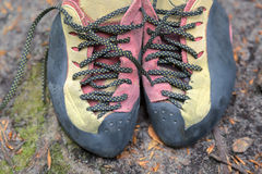 Pair of used climbing shoes Stock Photography