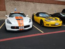 Pair of vettes stock photography