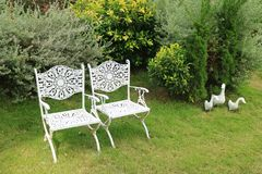 Pair of vintage style white wrought iron chairs in vibrant green garden with duck`s family statues. Tropical Garden royalty free stock image