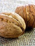 Pair of walnuts on jute Stock Photo