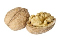 Pair of walnuts on the white background closeup. Pair of walnuts isolated on the white background closeup stock image