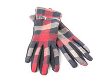 A pair of warm gloves women. On a white background Stock Image