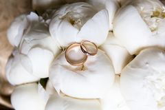 Wedding rings on a bouquet of flowers royalty free stock photography
