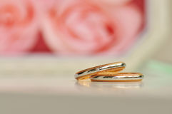 Pair of wedding ring roses in the background Stock Image
