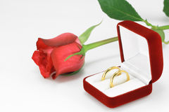 Pair of wedding rings Royalty Free Stock Photo