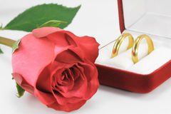 Pair of wedding rings. A pair of wedding rings and a red rose Royalty Free Stock Images