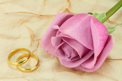 Pair of wedding rings. A pair of wedding rings and a pink rose Stock Photo