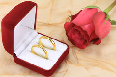 Pair of wedding rings. A pair of wedding rings and a red rose Stock Image