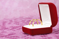 Pair of wedding rings. A pair of wedding rings in jewelry box Stock Images