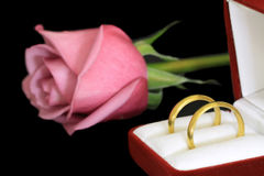 Pair of wedding rings Royalty Free Stock Image
