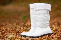 Pair of white female boots in autumn foliage stock photo