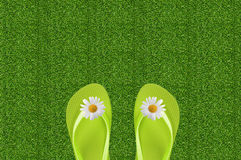 Pair Of White Flipflops In Grass Royalty Free Stock Photo