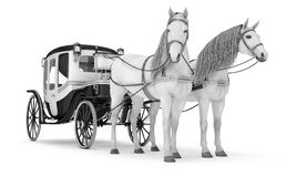 Pair of white horses pulled into a carriage. stock image