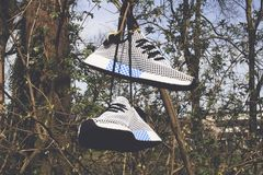 Pair of White Low-top Shoes Hanging on Tree Royalty Free Stock Photo