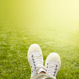 A pair of white trainers in the grass in the sunshine Royalty Free Stock Photography