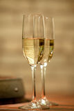 Pair of White Wine Glasses. White whine glasses shot in a wine cellar Royalty Free Stock Photography