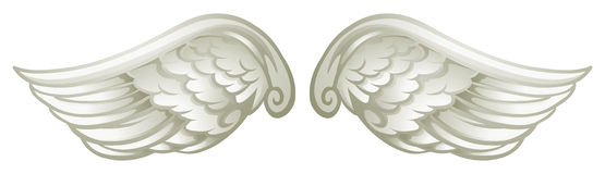 Pair of white wings Royalty Free Stock Image