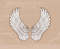 Pair of white wings in vintage style Royalty Free Stock Image
