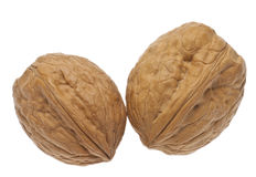 Pair of Whole Walnuts Royalty Free Stock Images