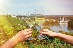 Pair of wineglasses Stock Photos