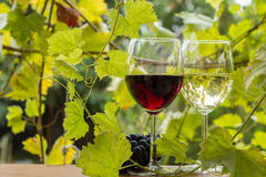 Pair of wineglasses and bunch of grapes Stock Photography