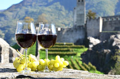 Pair of wineglasses and grapes Royalty Free Stock Images