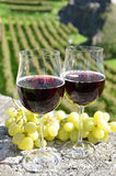 Pair of wineglasses and grapes Royalty Free Stock Photos