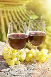 Pair of wineglasses and grapes. Bellinzona Royalty Free Stock Photos