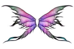 Pair of wings. Pastel colored set of fairy wings on white Royalty Free Stock Images