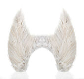 Pair of wings made from white feathers Stock Images