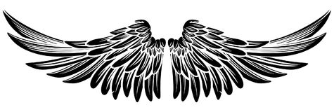 Pair Wings vector illustration