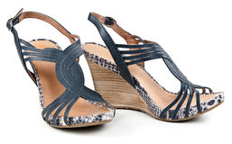 Pair of women's sandals Stock Photography