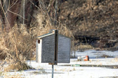 A Pair of Wood Duck Houses Royalty Free Stock Image