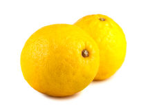 Pair of yellow lemons Royalty Free Stock Photo