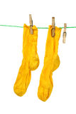 Pair of yellow socks hanging on the rope Stock Image