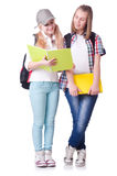 Pair of young students Royalty Free Stock Image