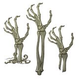 Pair of zombie hands rising from the ground and torn apart.  Royalty Free Stock Images